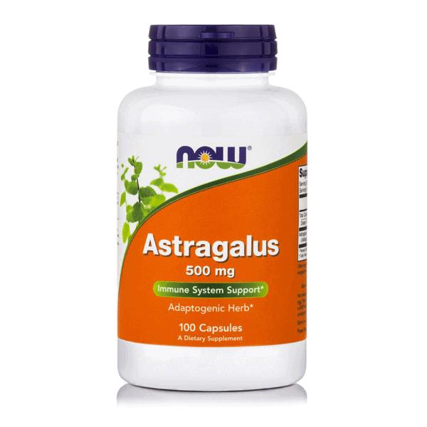 astragalus 500 mg 100 capsules now ενισχυση ανοσοποιητικου